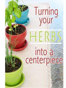 The Herb Centerpiece