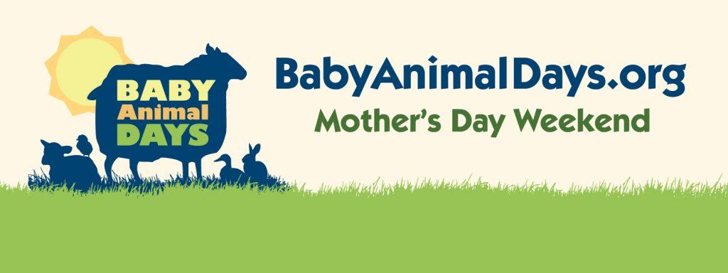 Baby Animal Days 2016